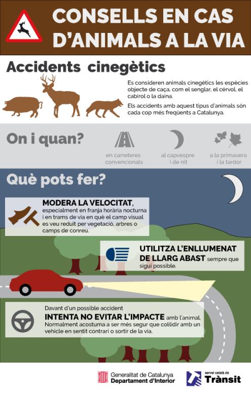 infografia-accidents-cinegetics-corregit